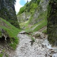 W_Sobczanski1a